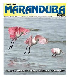 Jornal Maranduba News #93