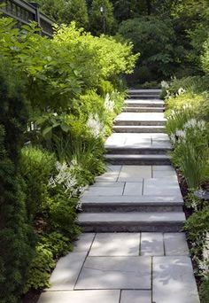 slate path. Irregular pattern  of pavers adds interest and  texture. Repetitious planting using minimal colour  palate harmoniously unifies. Nice ..