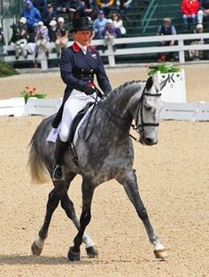 Come enjoy watching gorgeous dressage horses as they dance to music in FEI and CDI *** musical freestyles at one of the best equestrian venues in the world - The Kentucky Horse Park. Dressage Horses, Draft Horses, Party At The Park, Kentucky Vacation, Kentucky Horse Park, My Old Kentucky Home, Horse Farms, Long Weekend, Animals Beautiful