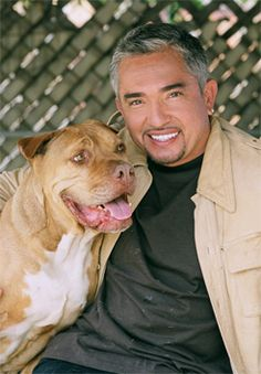 Cesar Millan.  The Dog Whisperer.  I love what he can do for dogs, but what he does with people is even more incredible.