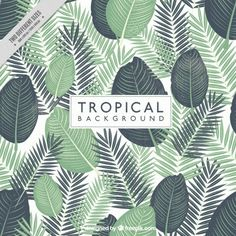 Hand painted tropical leaves background Free Vector