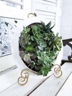 Using chicken wire, an old frame, fresh succulents and sphagnum moss I created this one of a kind planter that can be hung or propped up to be displayed!So cute and easy! Succulent Planter Diy, Hanging Succulents, Diy Planters, Succulents Garden, Hanging Plants, Succulent Frame, Indoor Planters, Planting Flowers, Old Frames