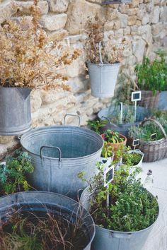 bassines en zinc pour les aromatiques. Attention à la chaleur qui sèche la terre.