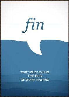 #savesharks stop finning  #sharkweek