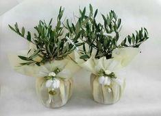 Risultati immagini per bomboniera ulivo bonsai