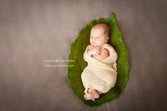 Felted leaf nest for newborn photography. by VanillaDreamsProps