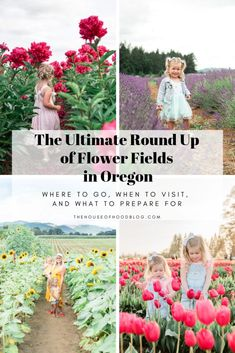 The ultimate round up of must visit flower fields in Oregon! I'm covering flower fields from Spring through Fall along with the best times to visit, what to bring, and what to prepare for! Oregon Vacation, Oregon Travel, Oregon Hiking, Hiking Trails, Moving To Portland Oregon, Oregon Utah, Bandon Oregon, Oregon Ducks, Types Of Flowers