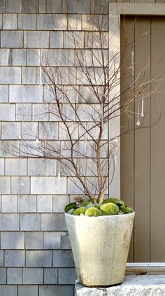 Love the simplicity of this container- notice the beautiful glass ornaments hanging from the branches.