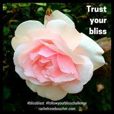Trust your bliss.  http://www.rachelroseboucher.com