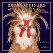 Backyard Chickens from My Pet Chicken: Offering chicken coops, pictures of chicken breeds and information on how to raise backyard chickens, plus gifts for chicken lovers! My Pet Chicken, Chicken Humor, Chicken Runs, Funny Chicken, Chicken Coops, Chickens And Roosters, Pet Chickens, Chickens Backyard, 2012 Calendar