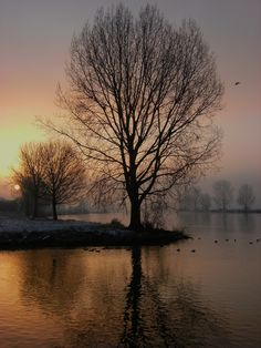 De Maas, Mook, Limburg.