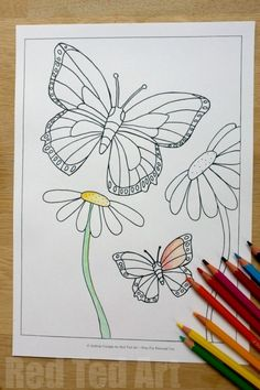 Summer Colouring Pages for Kids - Butterflies and Flowers (free printable)