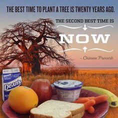 And the best meal to eat after you've planted that tree? PB&J, of course.