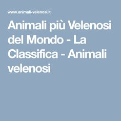 Animali più Velenosi del Mondo - La Classifica - Animali velenosi
