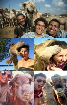 A Brief History Of The Most Influential Camel Selfies Of Our Time