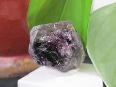Amethyst from Goboboseb/Branderg (BA1015)