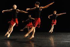 Members of the company in Vena Cava, Toronto Dance Theatre. Photo by Guntar Kravis