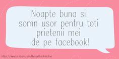 Noapte buna si somn usor pentru toti prietenii mei de pe facebook! Facebook