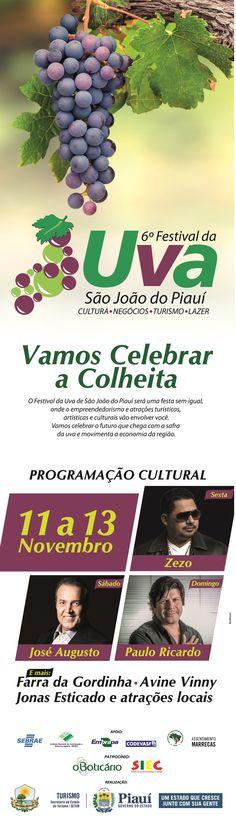 Anúncio Para Jornal VI Festival da Uva São João Do Piauí 2016 - Cliente Gov. do Piauí