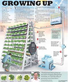 Skygreens in Singapore uses natural sunlight and gravity to insure even distribution of sunlight amongst the crop  #nabuproduce #spinach #kale #arugula #microgreens #nongmo #organic #leafygreens #babygreens #nom #urbanagriculture #plantfactory #hyperlocal #inspire #educate #worldhunger #nutrition #health #fitness #lifestyle #modern #living #human #gaia #recycle #sustainability #verticalfarming #urbanfarming #miami #florida by nabulifestyle