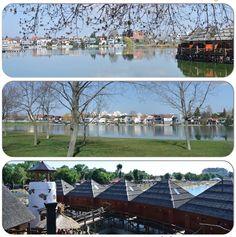 Dolores Park, Travel, Viajes, Traveling, Tourism, Outdoor Travel