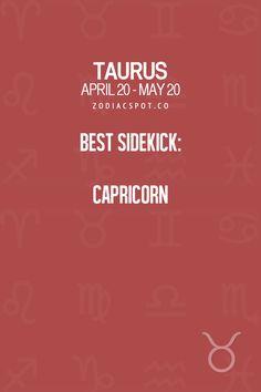 zodiacspot:  Your sidekick here!