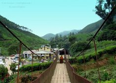 #Tour #packages to #Munnar are #exclusively #designed by the best planners for #people who like to #spend their #time at #hill #station and where #peace #rests and #beauty #prevails.