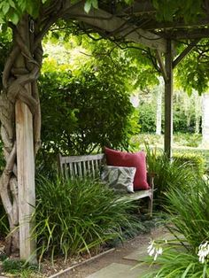 wisteria-covered arbour