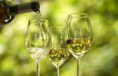 Vinhos da primavera