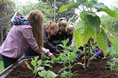 Tunne + Tila, Art meets Education meets Gardening at Rauma, Finland
