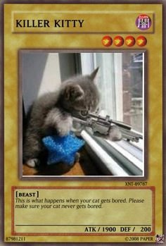 really funny cards - Any Other Cards - Yugioh Card Maker Forum