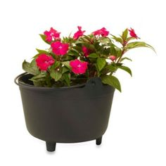 Black Plastic Kettle Planter in 15-Inch H - BedBathandBeyond.com