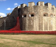 Blood Swept Lands and Seas of Red (ceramic) poppies installation at the Tower of London - in remembrance of WWI centennial.