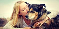Hundeernährung - Wie sieht die optimale Ernährung aus?