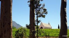 Views of the Small Town of Tulbagh in the rich Wine lands of the Boland Western Cape South Africa Cape Town, Small Towns, South Africa, Wine, Weddings, House Styles, Plants, Image, Africa