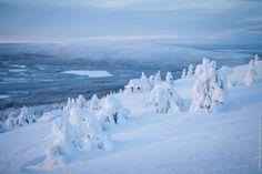 A little piece of winter heaven! Levi ski resort, Lapland, Finland.