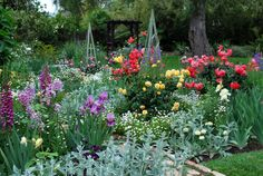 Gorgeous display of flowers.  Link has lots more pictures of her incredable cottage garden.