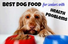 How to choose the best dog food for senior dogs with health problems. Tip, advice and recommendations are all here.