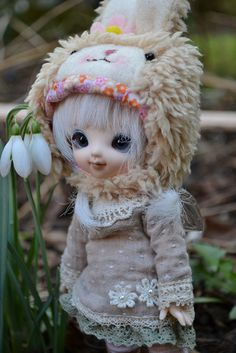 ADAD 15th of Febuary - Tilly with the snow drops, via Flickr.
