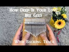 Backing Tracks, The Creator, Bee, Songs, Piano, Youtube, Finger, Times, Honey Bees