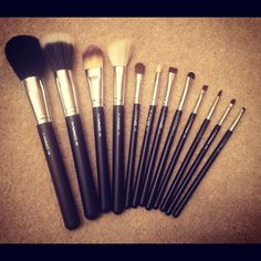 I'd love a collection of MAC brushes!