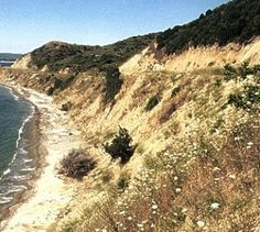 I'll be heading there on April 2015 for the 100 year anniversary of The Gallipoli Landing. Anzac Cove, Anzac Day, We Run, April 25, Day Tours, Wwi, Geography, Trip Planning, Places To See