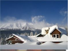 Gulmarg. . Been here. . Lived t moment!  The view had been captured in my heart almost instantlyy!