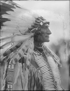 A portrait of Man-not, a Crow man, wearing a feather headdress. Collection Richard Throssel. Date Original: 1902-1933. University of Wyoming. American Heritage Center.