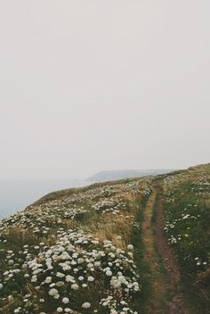 50 best Ideas for quotes nature adventure paths Beautiful World, Beautiful Places, Beautiful Scenery, Beautiful Pictures, Affinity Photo, All Nature, Flowers Nature, Boho Flowers, Green Nature