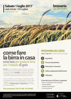A Cagliari un corso per imparare a fare la birra in casa - Vini di Sardegna e Cantine - Le Strade del Vino