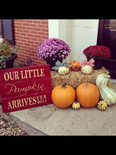 Gender reveal party ideas for shell Fall Gender Reveal, Pumpkin Gender Reveal, Halloween Gender Reveal, Gender Party, Baby Gender Reveal Party, Otoño Baby Shower, Baby Shower Themes, Fall Pregnancy Announcement, Gender Reveal Decorations