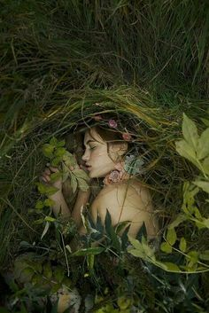 Peacefully sleeping in a gentle meadow
