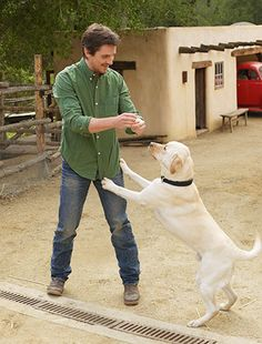 Christian Bale photo shoot with a dog. One of my favorite pictures of him, he looks so relaxed and comfortable. Christian Bale, Batman Begins, Mans Best Friend, Best Friends, Man And Dog, Dog Id, Gorgeous Men, Pet Birds, Movie Stars
