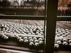 草間彌生 わが永遠の魂 Yayoi Kusama: My EternalSoul ナルシスの庭 Narcissus Garden The National Art Center Tokyo iPhone7/Procamera/Snapseed  #国立新美術館 #NationalArtCenter#japan #tokyo #procamera #vsco #shotoniPhone #instadiary #shotoniPhone7 #instagramjapan #ig_japan #instadiary #iphonephotography #ink361_mobile #ink361_asia #reco_ig #igersjp #mwjp #team_jp_ #indies_gram #hueart_life #ig_street #streetphotography #写真好きな人と繋がりたい #写真撮ってる人と繋がりたい #東京カメラ部 #tokyocameraclub #iPhone越しの私の世界
